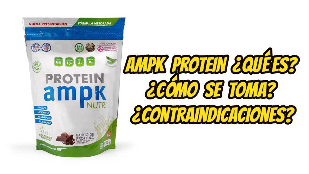 AMPK Protein ¿Qué es? ¿Cómo se toma? ¿Contraindicaciones?